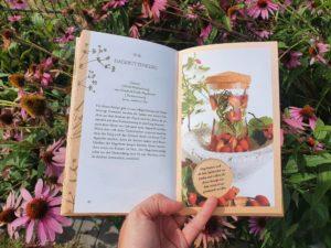 Ein Blick in das neue Buch von Fräulein Grün.